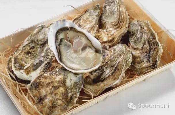 Oysters Boost Virility in China