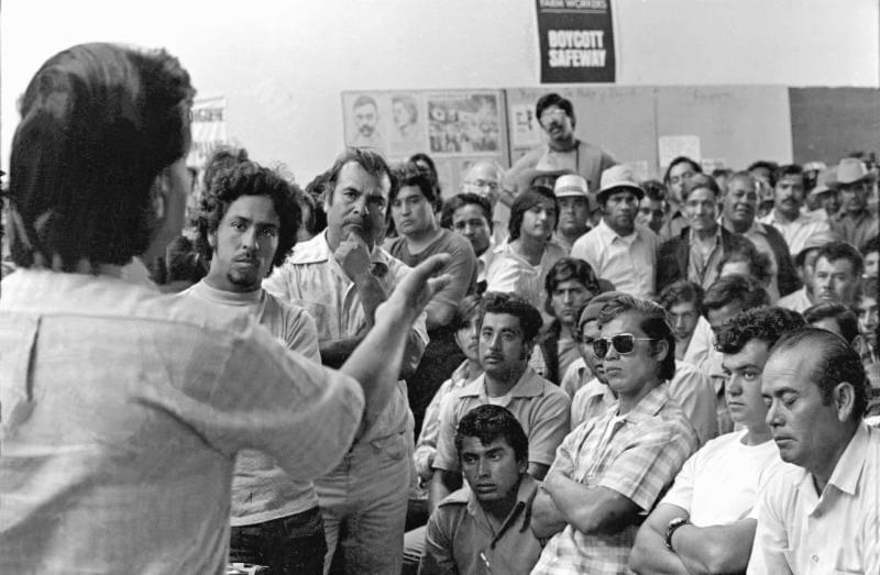 Library - Cesar Chavez Service Clubs