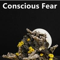 Conscious Fear Possibility Management