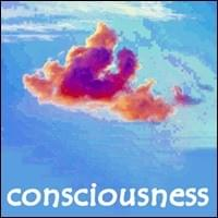 Consciousness Possibility Management