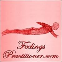 Feelings Practitioner Possibility Management
