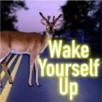 Wake Yourself Up Possibility Management