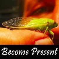 Become Present Possibility Management