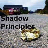 Shadow Principles Possibility Management