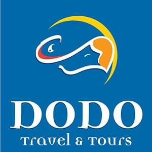 DODO Travel & Tours