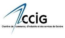 CCIG Member