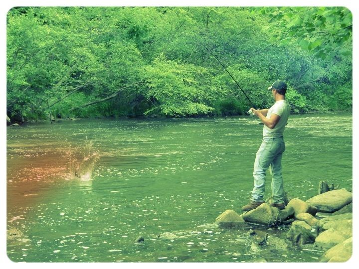 Landing a rainbow trout at the Jessup Mill Dam