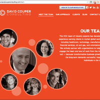 http://www.davidcouperconsulting.com/