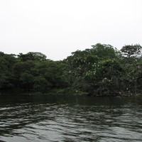 The heron's island seen from the boat