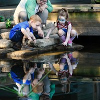 Sally Wade, center, points out fish below the surface to her grandchildren Roan Wade, 6, and Georgia Wade, 4, in the still water of the boat rental dock area Friday, Aug. 14, 2015, at Tyler State Park north of Tyler. The Wade family, from rural Winona, are frequent visitors to the park, built in the 1930s by the Civilian Conservation Corps. Andrew D. Brosig/Tyler Morning Telegraph