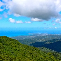 El Yunque National Forest - Puerto Rico