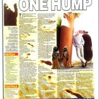 One Hump or Two - Travel Article