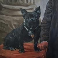 Bonaparte The French Bulldog  (oil on board)