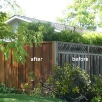 Cleaning & sealing wooden fences makes a huge impact in the overall appearance of your home.