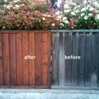 A fence in a residential neighborhood after cleaning & sealing. The difference is amazing.