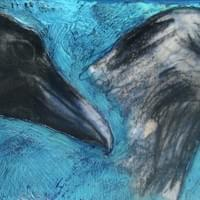Two Ravens (photo reference Jim O'Connor