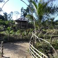 Native Village Food garden Palawan Philippines