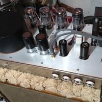 Volition Amps Jim Kelly clone