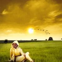 Woman in a field at sunset