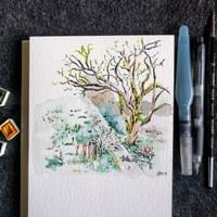 Watercolor backyard