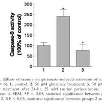 Protective function of taurine in glutamate‐induced apoptosis in cultured neurons
