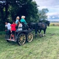 Amy & her 2 nephews on a carriage ride after Amy's lesson. 😊