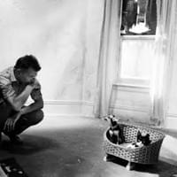 Samuel Beckett and cats