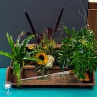 Custom Arrangement with Fresh Cut Flowers and Plants