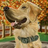 Digital Golden Retriever Painting