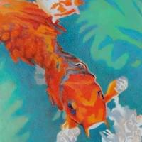 Five Colorful Koi