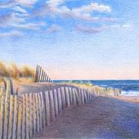 Beach Dunes with Fence