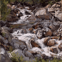 Little Cottonwood Creek in July