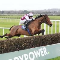 Articulum on his way to winning his novice chase at Naas Racecourse