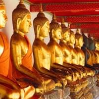 Hundreds of life-sized Buddhas. Wat Po
