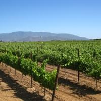 Temecula CA wine country