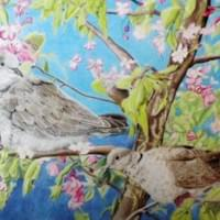 Dove Sweet Doves - Sold