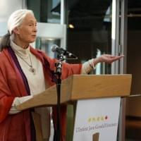 Event Photography: Dr. Jane Goodall