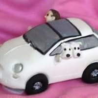 Car with dogs  £60