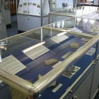 Mere Museum, Wiltshire Silver framed display cabinets with hinged locking flip top opening for access.  Cabinets on castors.