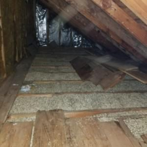 Insulation Removal Before