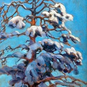 DECEMBER 10th, GALLEN KALELLA, SNOWY PINE TREE, C.1900