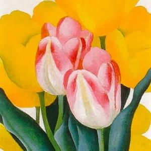 NOVEMBER 12th, O'KEEFFE, TULIPS PINK AND YELLOW ,1925