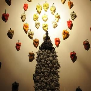 Pepper's buddha -Installation-