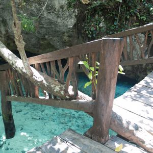 Excursion Gran cenote avec guide francophone