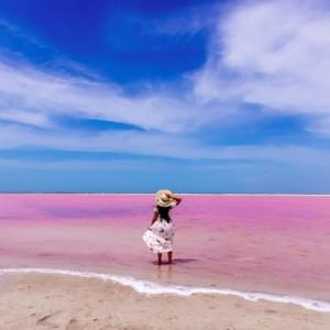 Excursion Rio lagartos Las coloradas  avec guide francophone