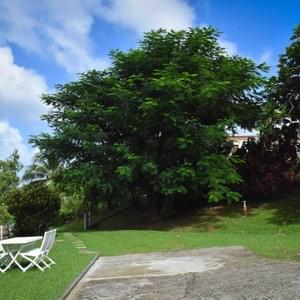 location-appartement-vacances-martinique-nature