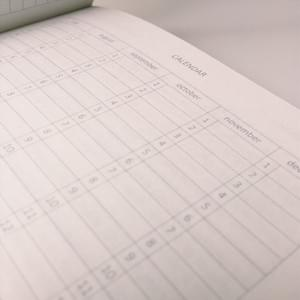 Year Planner - NOSO Journal