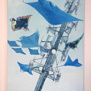 Blu Rays, 2012, oil on canvas, 48 X 36 inches