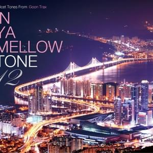 "V.A. ""IN YA MELLOW TONE 12"""