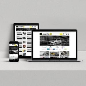 Auto 8 New Website on different Devices.